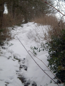 Snow blocks the Shropshire Way