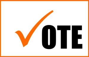 vote_300